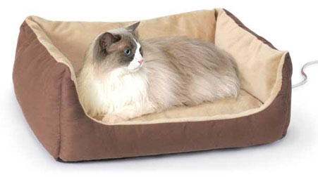 How To Choose The Right Heated Pet Bed