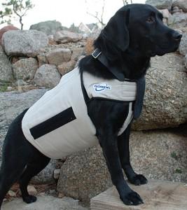 cooling-dog-vest_H