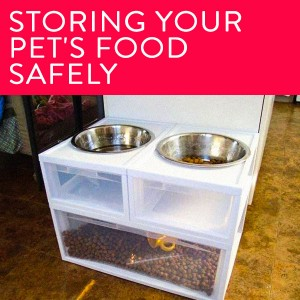 july 3 storing pet food