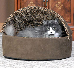 Leopard Thermo-kitty Bed Heated Cat Bed, Size Large, Mocha