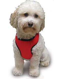 Kumfy Tailz Cooling Harness Cool Vests For Dogs