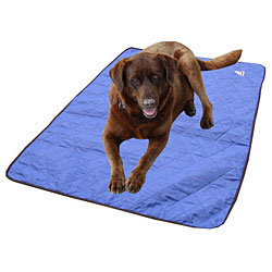 Cooling Dog Products Amp Pet Accessories Cozywinters