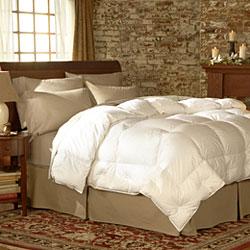 Pacific Coast Medium Warmth Down Comforter