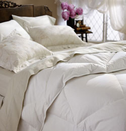 Restful Nights All-natural Down Comforter, Twin 48471