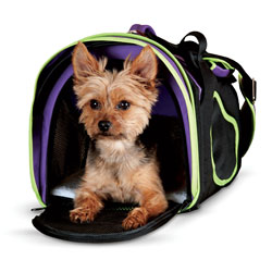 Comfy Pet Carrier