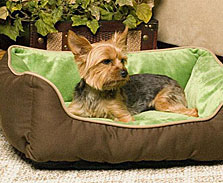 self warming dog beds - Heated Dog Bed